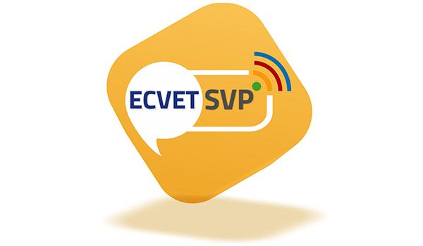 ecvet-skills-platform